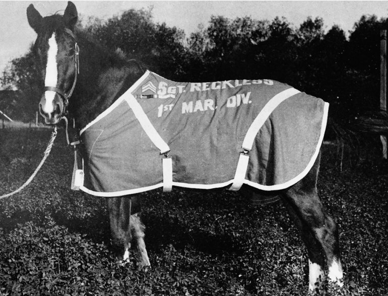 ca. 1954–1955, Fotografie.