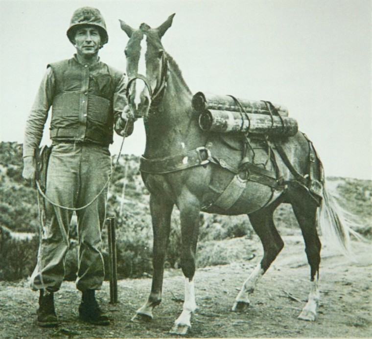 ca. 1952–1953, Fotografie.